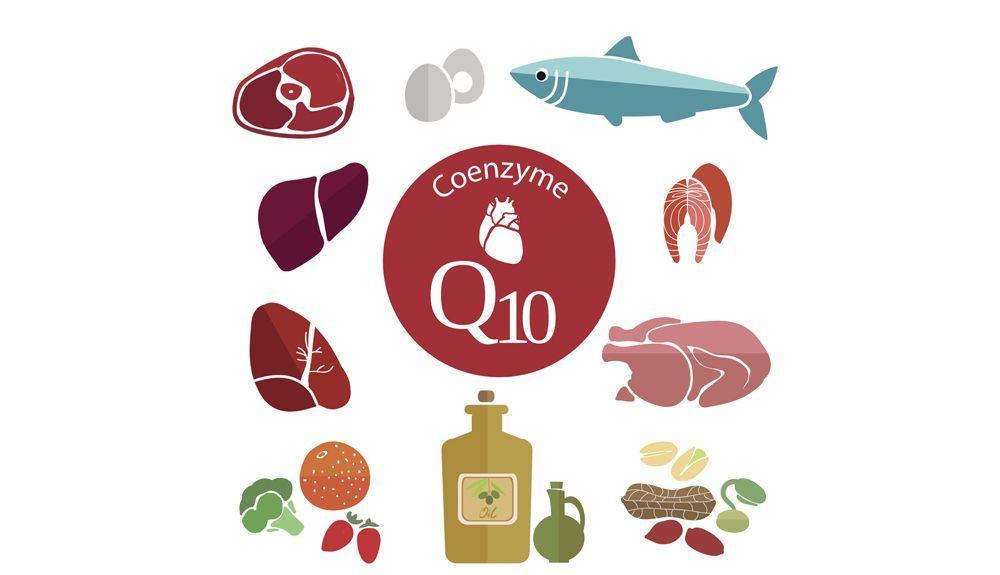 Alimentos con coenzima Q10
