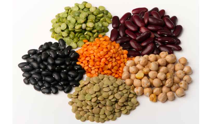 ¿Sabes dónde conseguir proteínas vegetales?