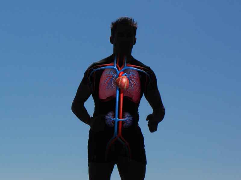 Muerte súbita: 10 preguntas claves