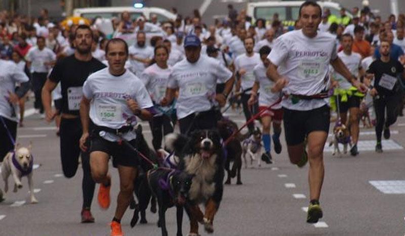 Una carrera a cara de perro: ¡vuelve el perrotón!