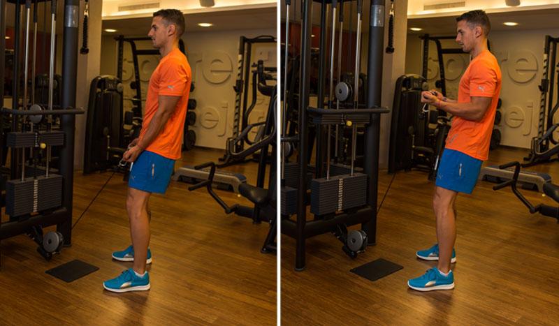 Vuelta al gimnasio: nivel medio | Fitness | Sportlife