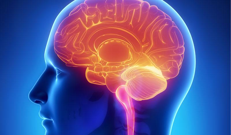 Deporte y estrés: ¿cómo afecta a tu cerebro?