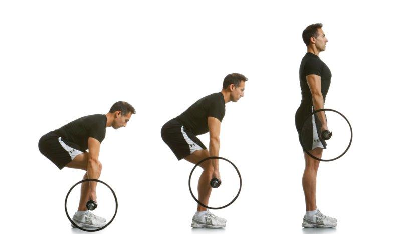 El corrector de ejercicios