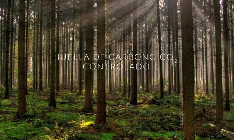 Únete al bosque de Chiruca y planta tu propio árbol