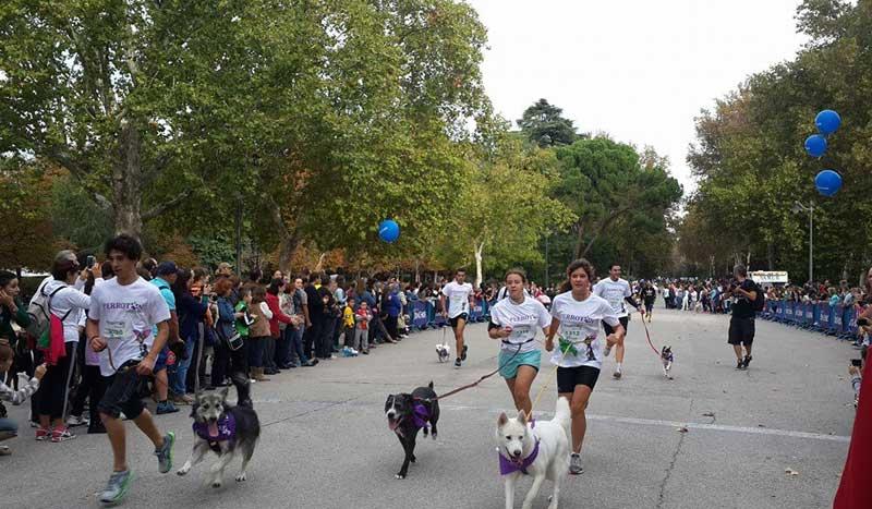 ¡Para correr con tu mejor amigo! No te pierdas el Perrotón 2016