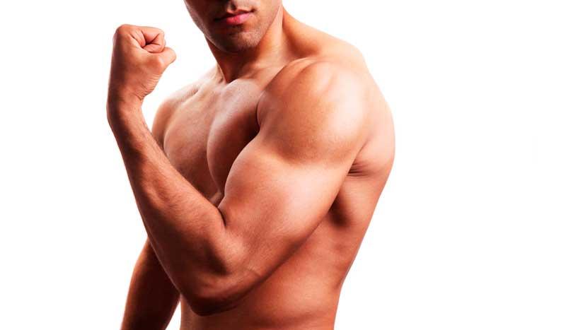 ¿Fibras tipo I o tipo II? La clave del músculo