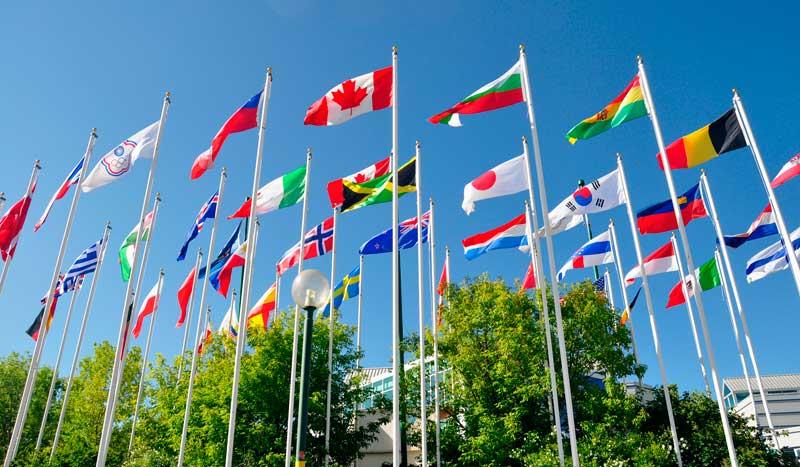 ¿Qué podemos ver hoy en los Juegos Olímpicos de Río? Día 12
