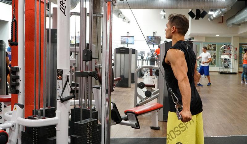 Los ejercicios que necesitan tus tríceps