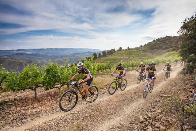 Mountain bike en el Priorat