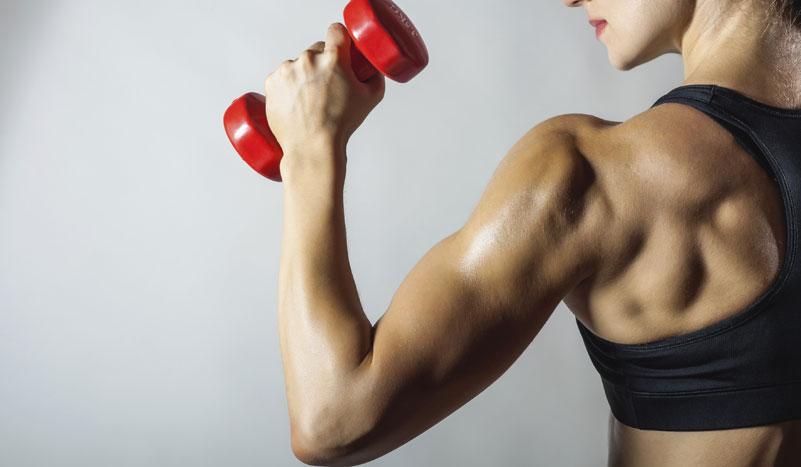 Lo que nunca te contaron para ganar músculo