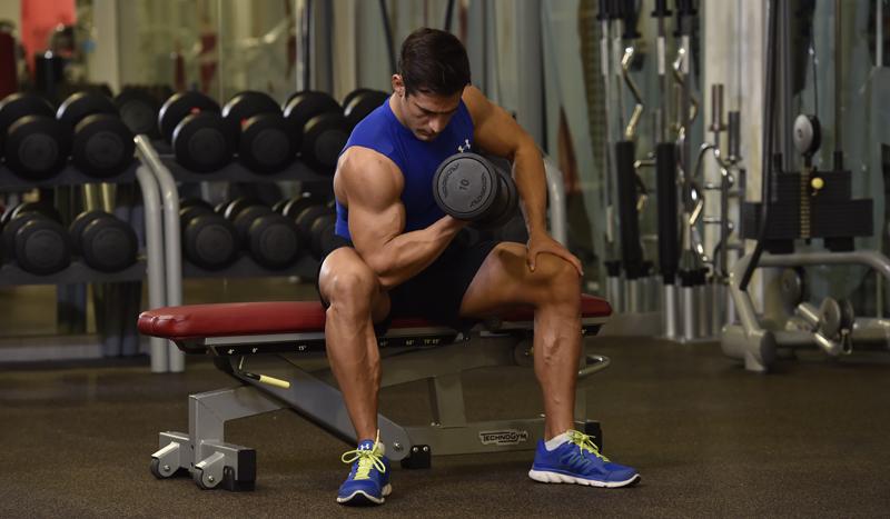 ¡Todo sobre el bíceps! Consigue unos brazos fuertes y funcionales