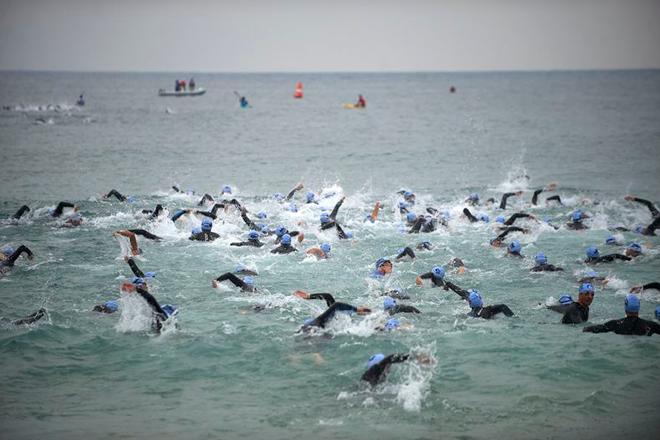 Zoggs SwimBarcelona, La travesía de natación de la ciudad condal