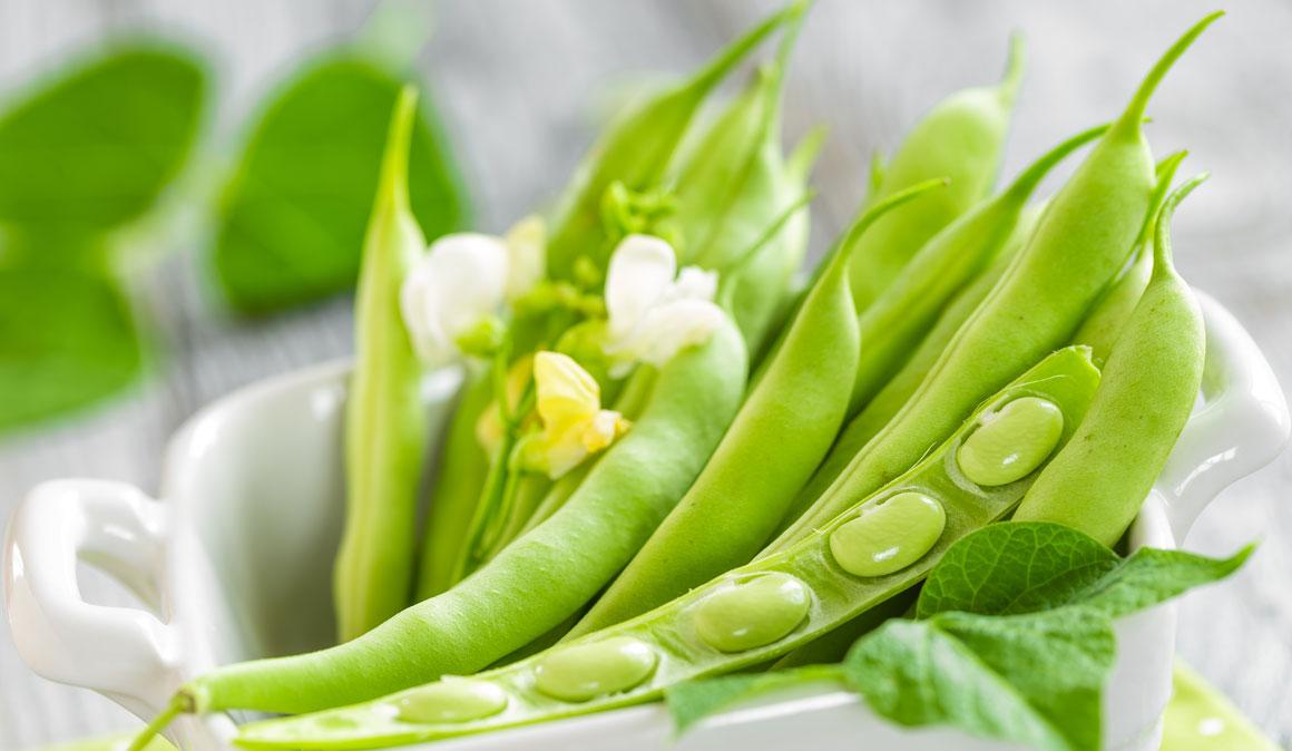 Judías verdes, un superalimento rico en fibra y vitamina C