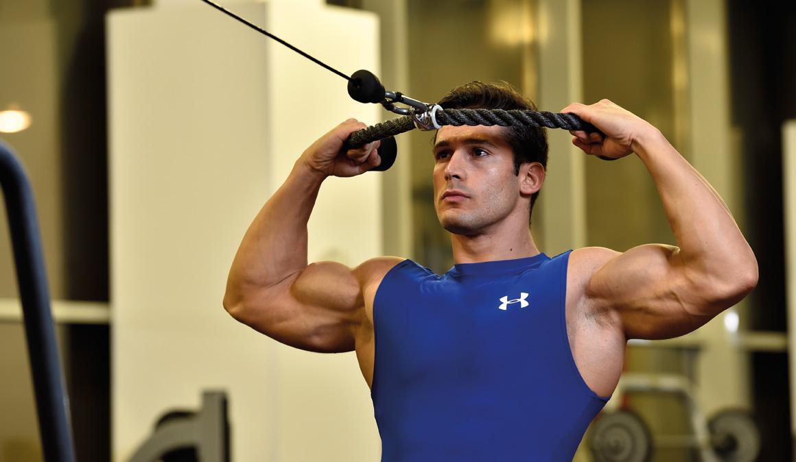 Hombro: todos los ejercicios para entrenar, fortalecer y prevenir lesiones