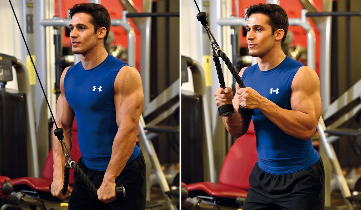 Todos los ejercicios para entrenar tus tríceps en el gimnasio