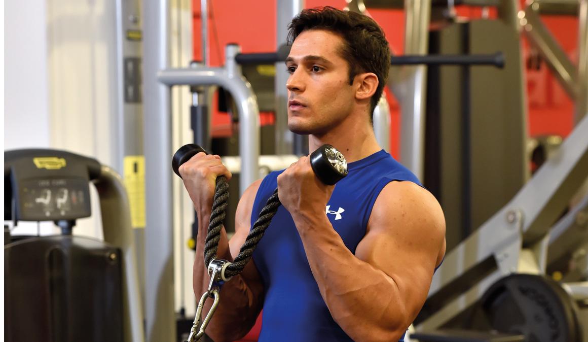 El sistema muscular del cuerpo humano: entrena para ganar fuerza y ...