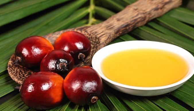 ¿Es tan malo como dicen el aceite de palma?