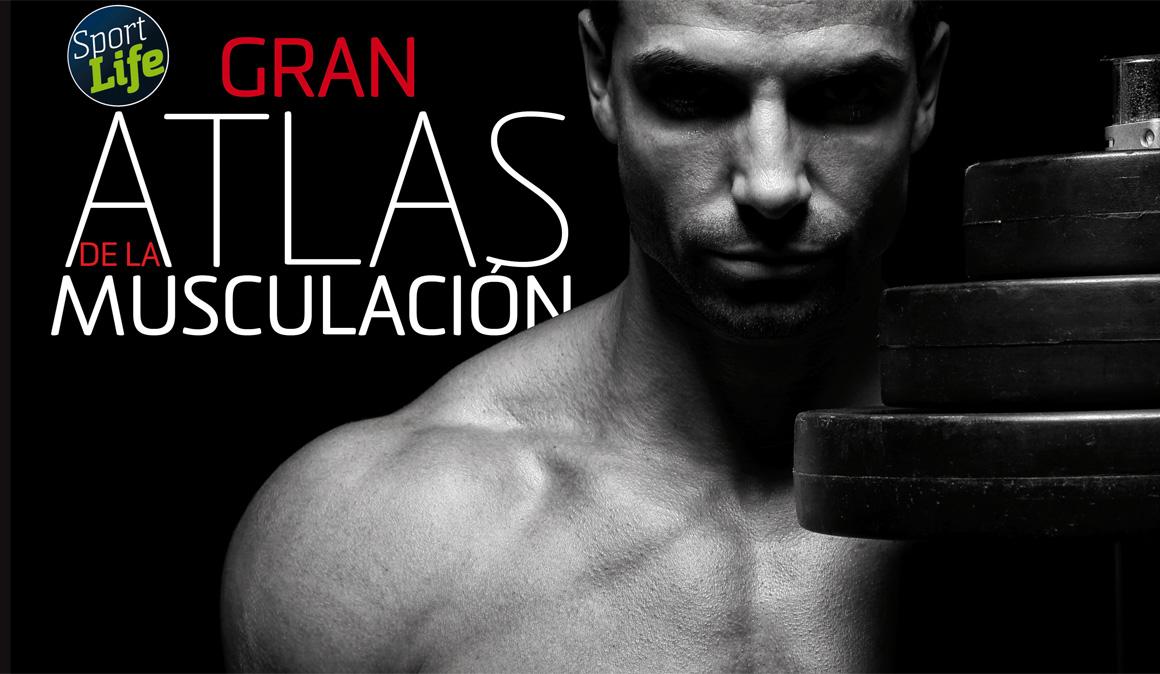 El Gran Atlas para renovar tus músculos