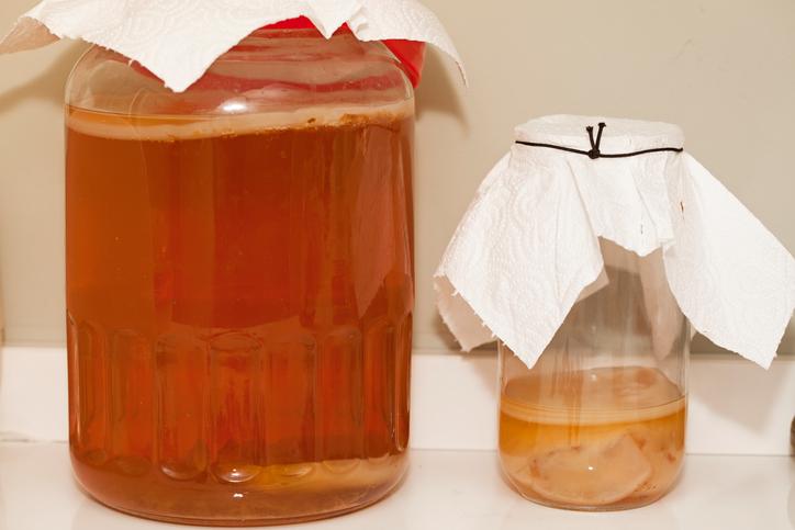 ¿Qué es el té kombucha? Bebidas fermentadas, alimentos para deportistas