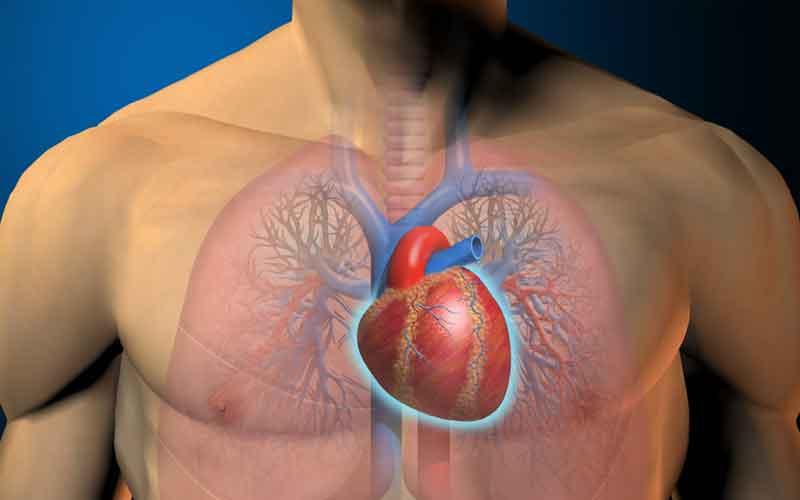 La muerte súbita del corredor y los falsos mitos de la cardiología deportiva