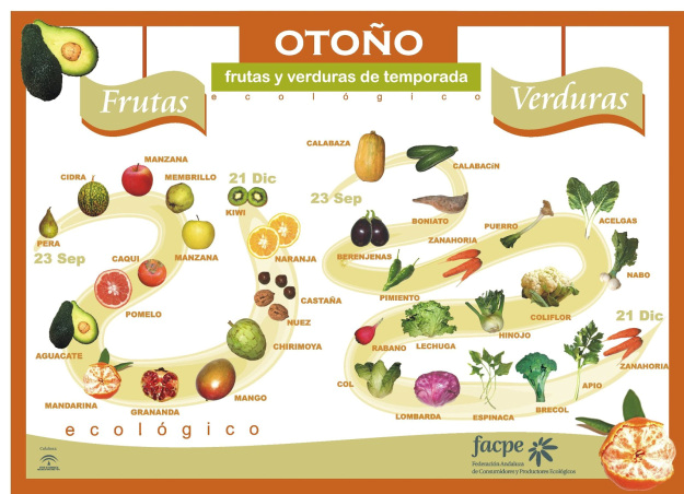 Las 10 verduras y frutas de este otoño