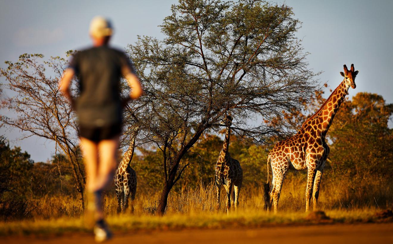 Los tres maratones más originales del mundo