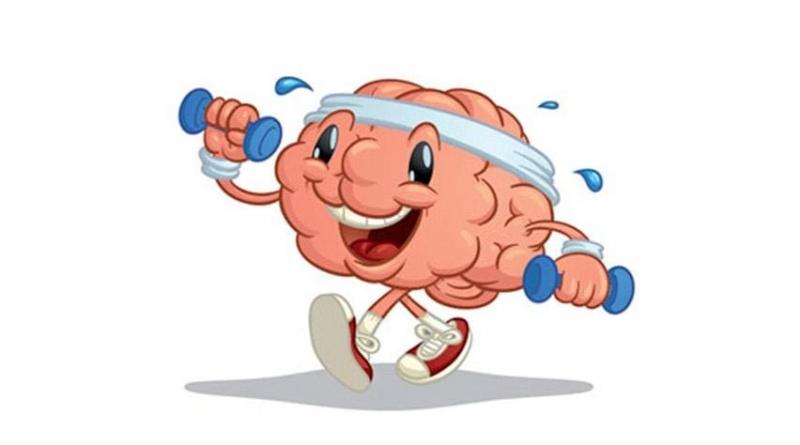 Fitness para tus neuronas