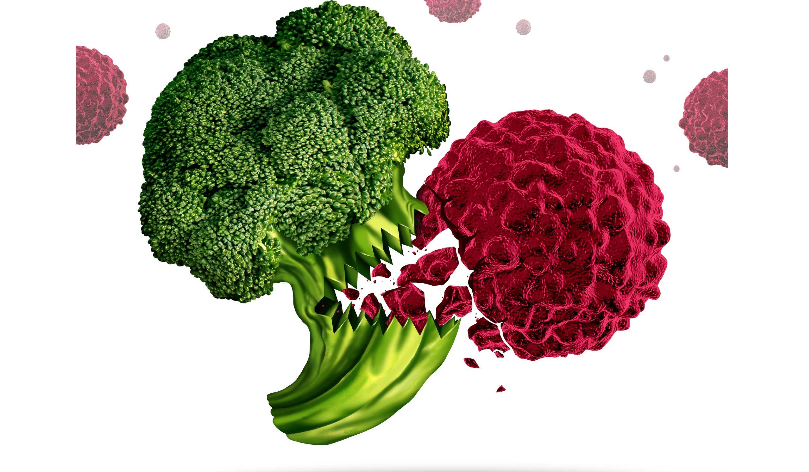 Alimentos que no deberíamos comer si queremos prevenir el cáncer