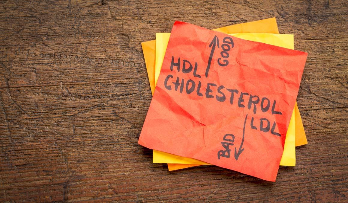 ¿Qué es el colesterol HDL y cuándo es alto?