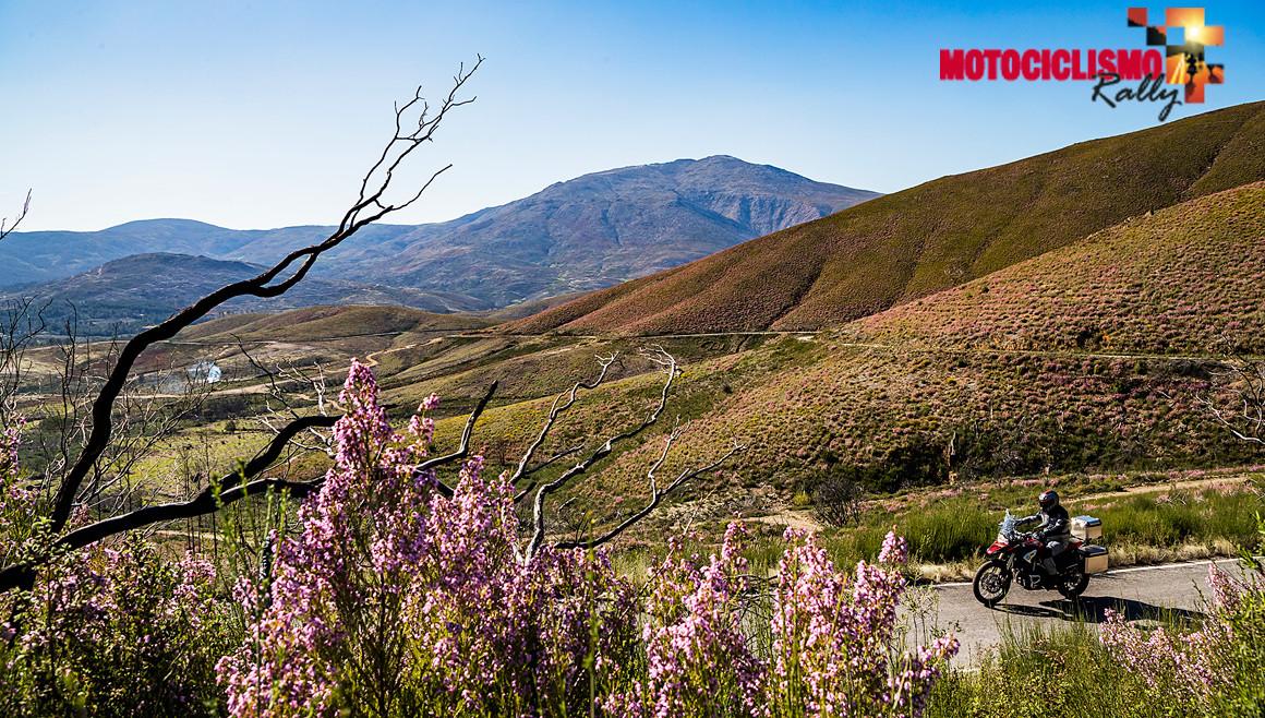¡Apúntate al reto de MOTOCICLISMO Rally!