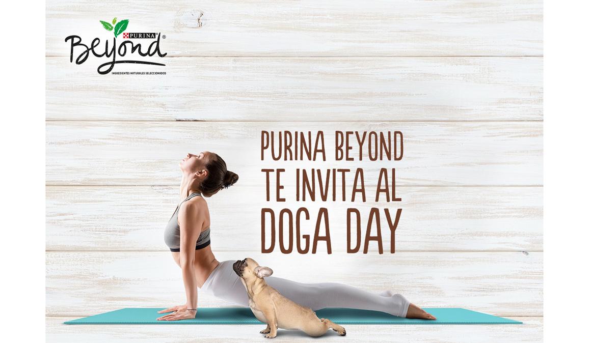 Doga, yoga con perros en Alcorcón en el Beyond Doga Day el 16 de junio