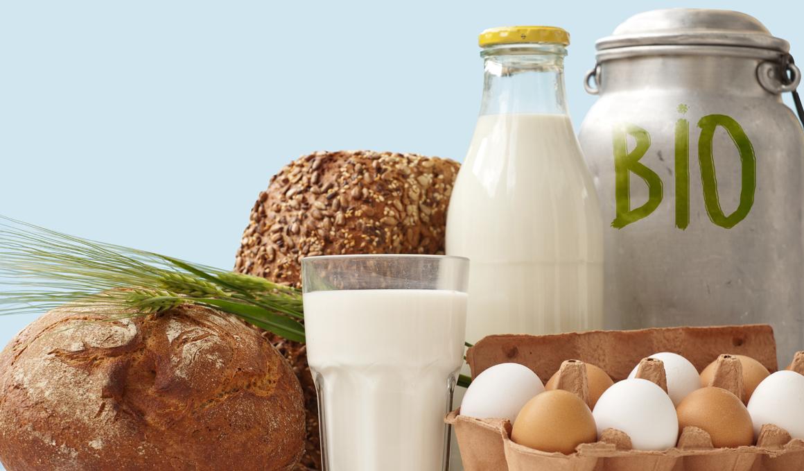 Diferencias entre alimentos ecológicos, orgánicos y bio, ¡te las explicamos!