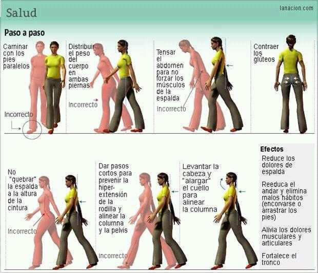 Los 7 puntos clave para un caminante perfecto