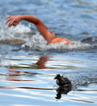 Empieza la temporada nadando