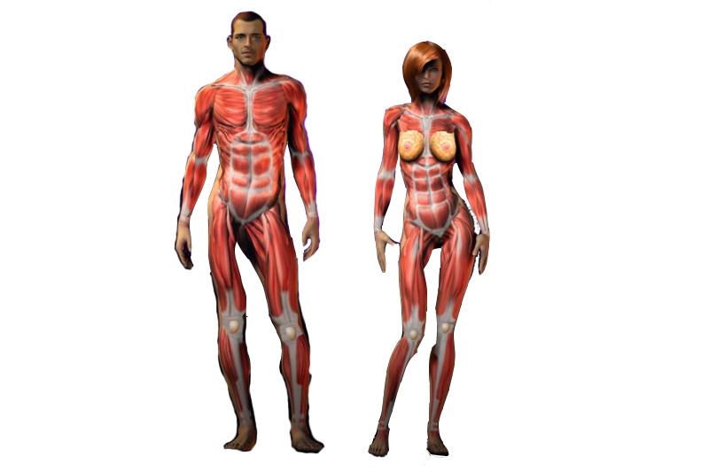 El hombre y la mujer deportista