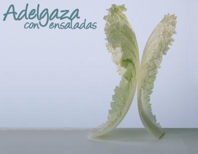 Adelgaza con ensaladas
