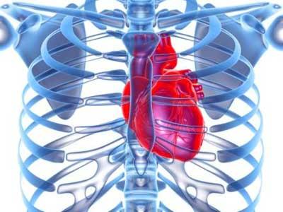 Cómo conseguir un corazón más fuerte