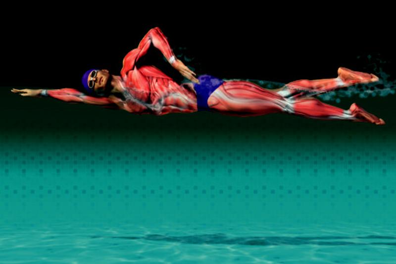 Preparación fisica específica: natación