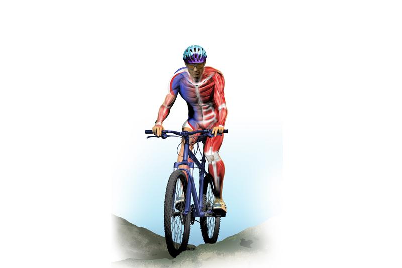 Preparación física específica: Mountain Bike