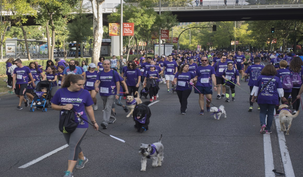 Corre con tu perro en la 7ª edición de la Perrotón