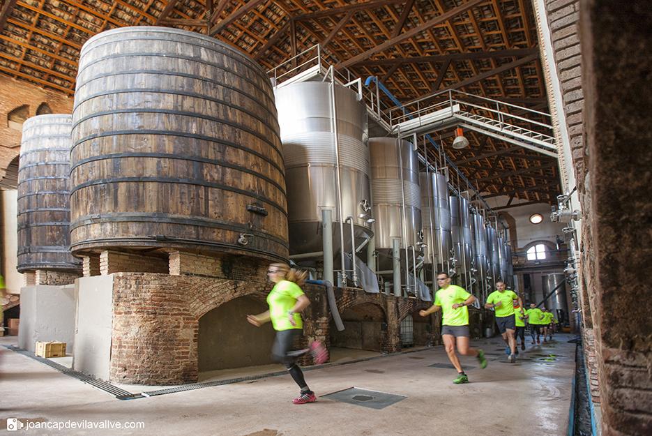 El maratón con vino en los avituallamientos