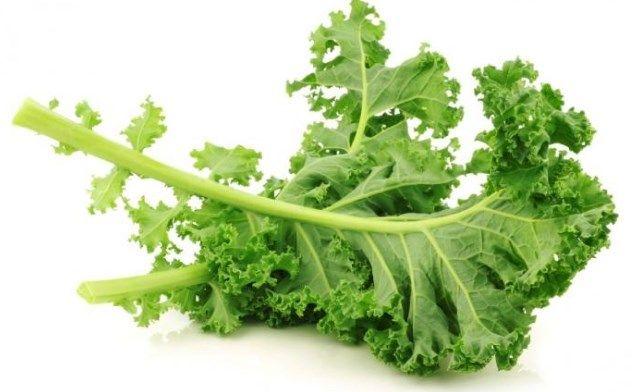 Porqué el Kale está de moda