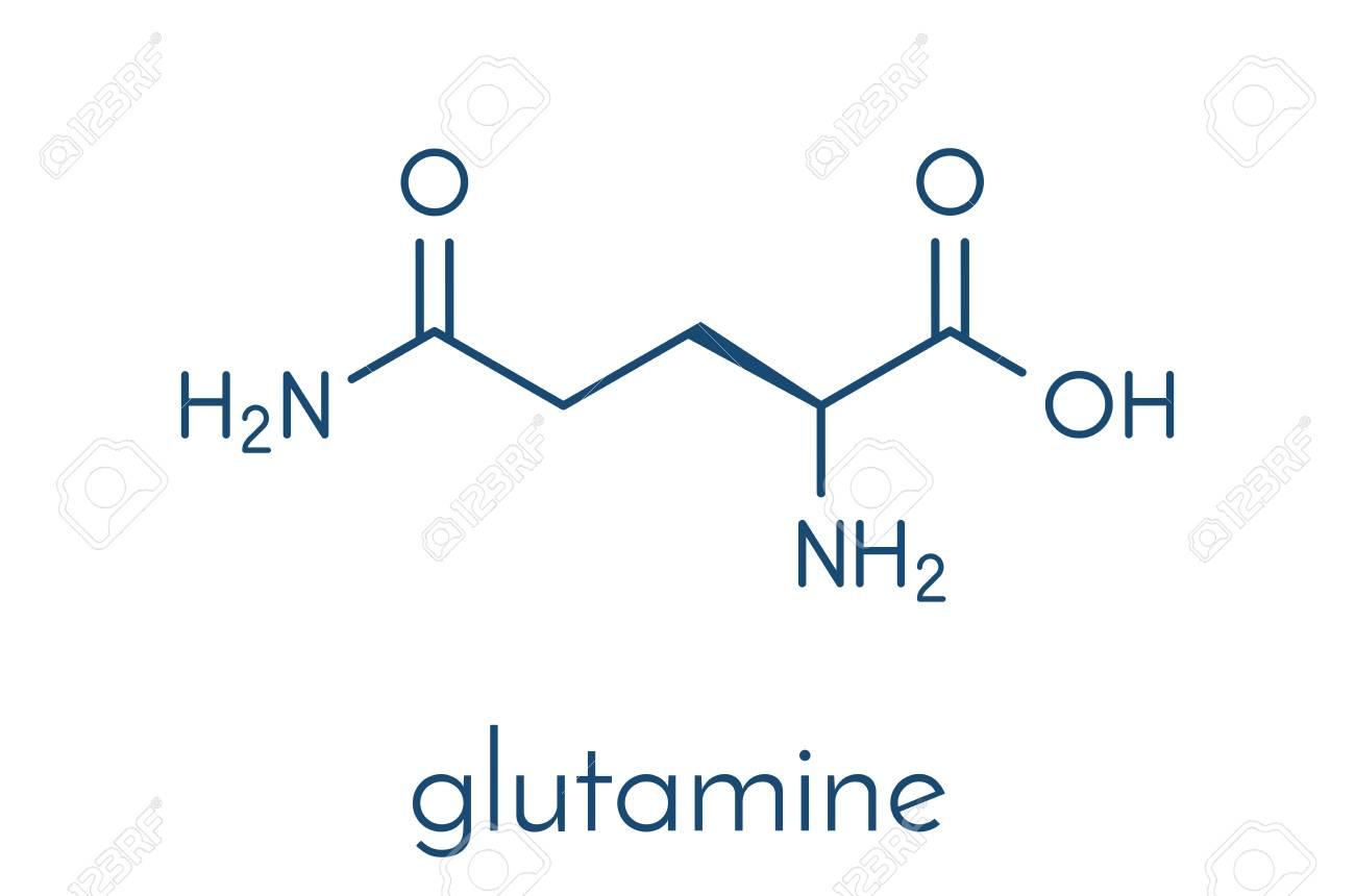 Glutamina, una solución para salir del sobreentrenamiento