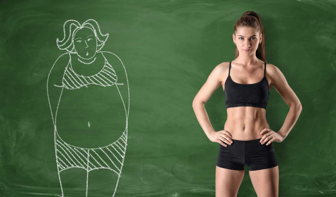 Descubierta una molécula que acelera el metabolismo energético en las células grasas