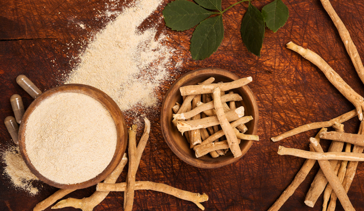 La ashwagandha o ginseng indio de la medicina ayurvédica