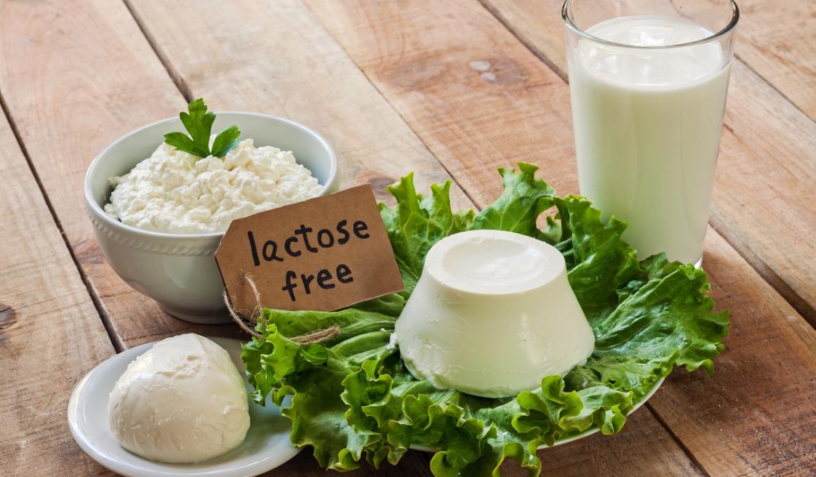 Alternativas saludables si tienes intolerancia a la lactosa