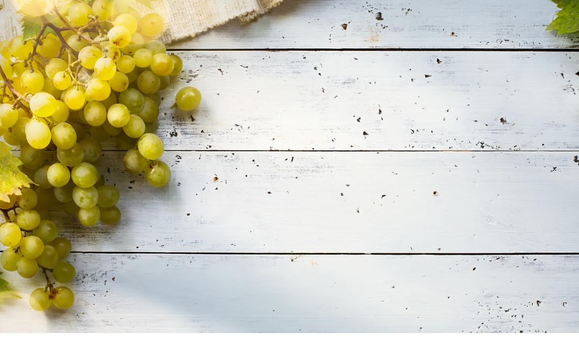 ¿Cuáles son las mejores propiedades de la uva?