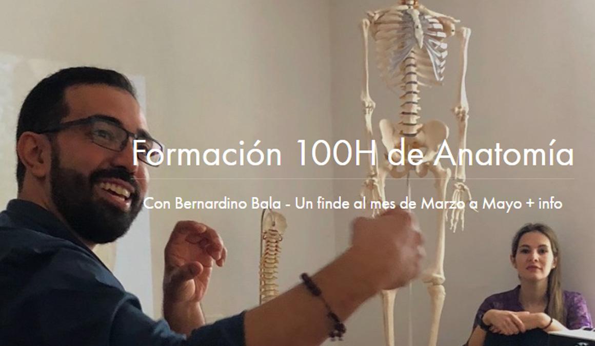 Formación Anatomía para el Yoga en ZUY Madrid
