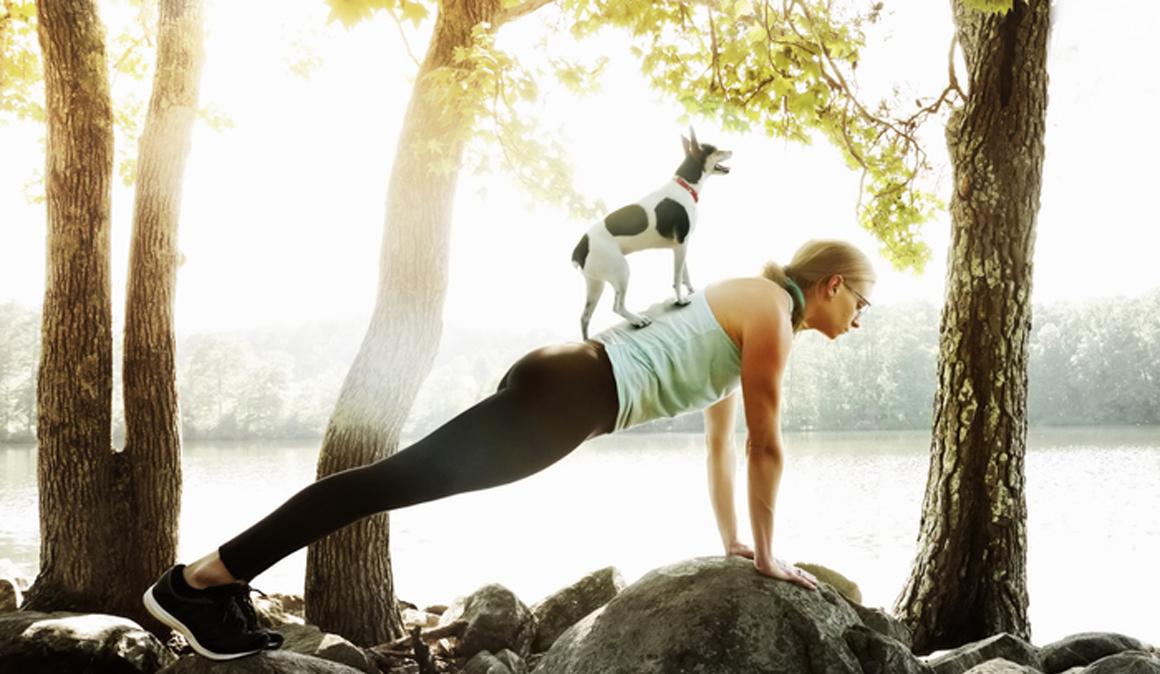 Descubre el Doga, yoga con perros