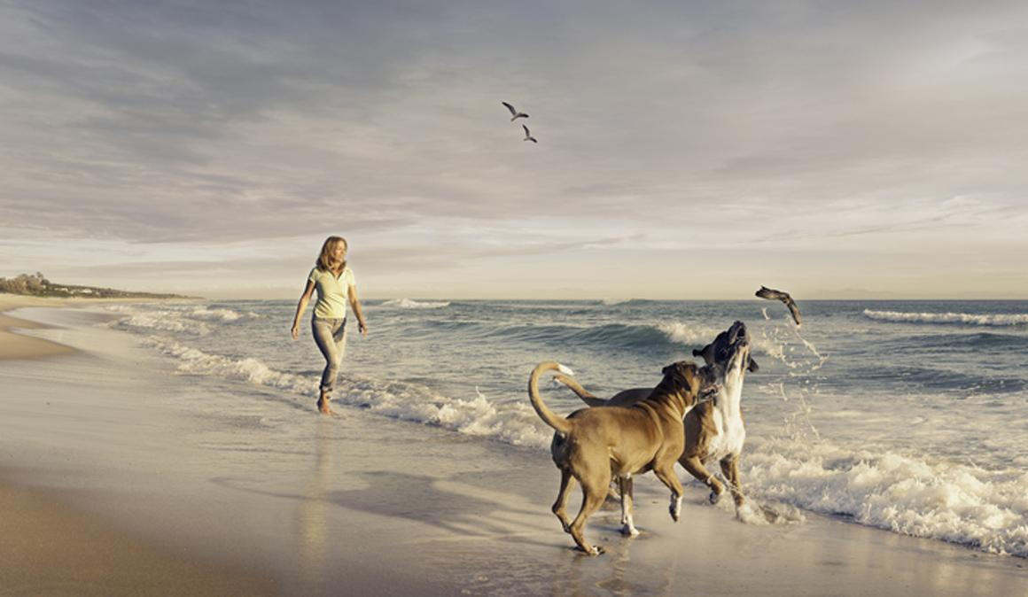 Tener un perro ayuda a tener mejor salud cardiovascular